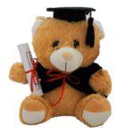 Αποφοίτηση